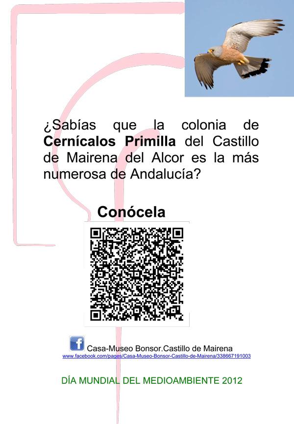 Cernícalos_primilla