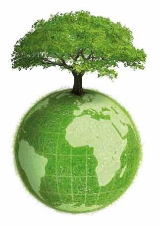 dia-mundial-medio-ambiente