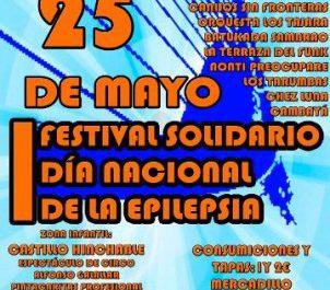 Cartel del I Festival Solidario de Ápice