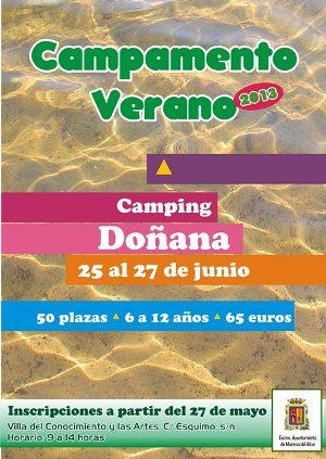 Cartel de los Campamentos de Verano de 2013