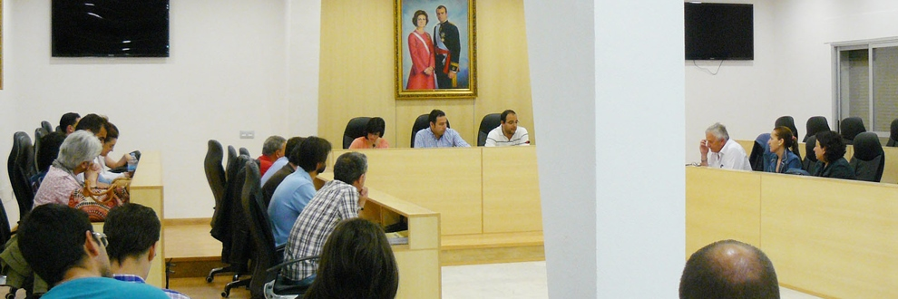Pleno_municipal_mairena_del_alcor_2013