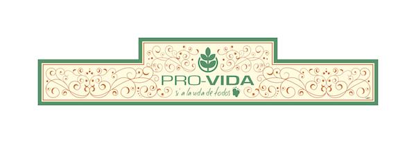 Pañoleta nueva Provida_600