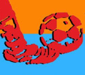 Torneo futbol sala logo falso_300