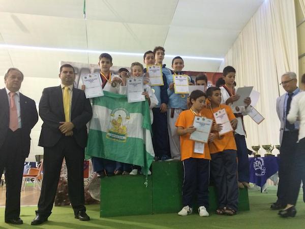 Álvaro Domínguez subcampeón España taekwondo