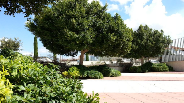 Parque Emasesa El Patriarca