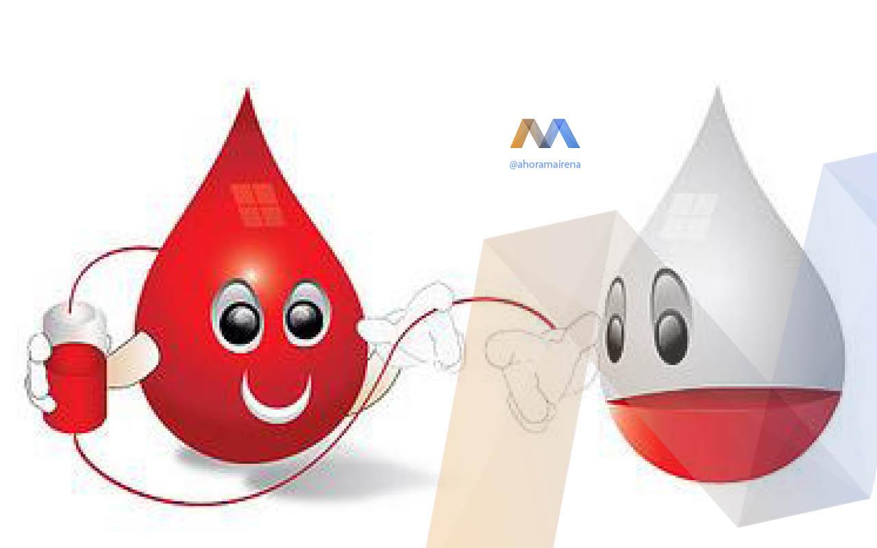 Donación de sangre en la Hermandad de la Vera-Cruz