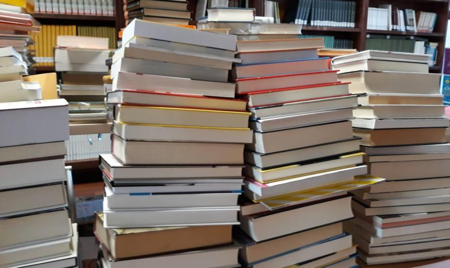 Nueva donación de libros de la Fundación José Manuel Lara a las bibliotecas maireneras